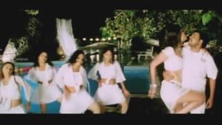 Kalavaramo Paravasamo Video Song || Naa Girl Friend Baaga Rich Movie || Sivaji, Kaveri Jha