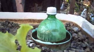 getlinkyoutube.com-filtro para caixa d água aquaponia muito bom limpa tudo