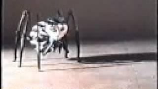 James And The Giant Peach - Mrs Spider Animation Tests