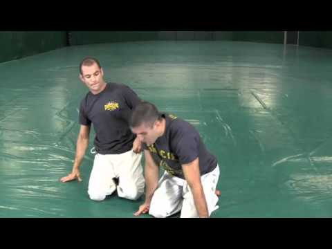 UFC 139 Shogun vs. Hendo (Gracie Breakdown)