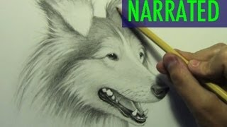 getlinkyoutube.com-How to Draw a Dog [Narrated Step by Step]