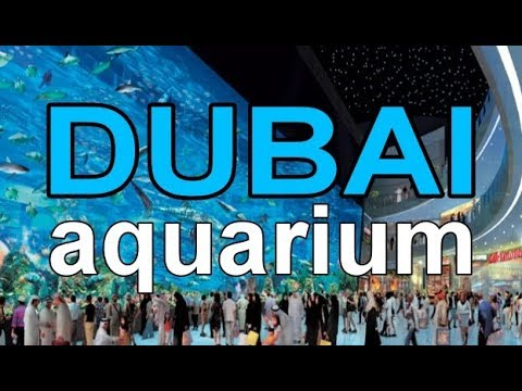 Full Coverage of The Dubai Mall Aquarium in Max. HD 18+ minutes
