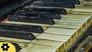 getlinkyoutube.com-Sad Piano Music, Music for Stress Relief, Relaxing Music, Meditation Music, Soft Music, ✿3088C