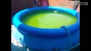 Água verde da piscina.  Como eliminar sem desperdiçar uma gota de água.