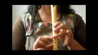 getlinkyoutube.com-NOCHE DE PAZ  en flauta dulce