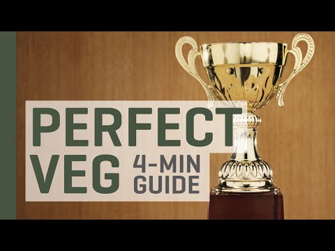 Create the Perfect Vegetative Period Indoors — 4 Minute Guide