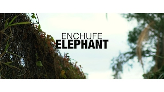 Enchufe - Elephant