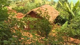 Kampeni ya kusisitiza kuboreshwa kwa hali ya utawala katika sekta ya misitu Tanzania.