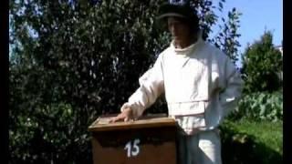 getlinkyoutube.com-Пчеловодство (уникальный метод - 3-5 фляг меда с улья)