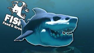 getlinkyoutube.com-CÁ MẬP HỔ KHỔNG LỒ!!| Feed and Grow: FISH [10]