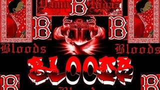 getlinkyoutube.com-Blood Gang Affiliation - Lil Wayne not Blood says P.Rogers