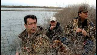 getlinkyoutube.com-T&T Duck and Goose Calls - The Calling