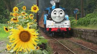 getlinkyoutube.com-Real Life Giant Thomas and friends James, Hiro, Percy. (thomas wooden railway)