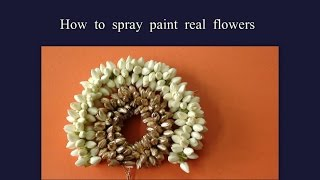 getlinkyoutube.com-How to spray paint real flowers