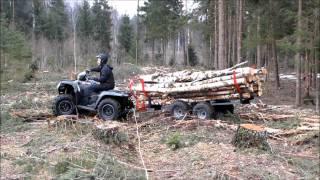getlinkyoutube.com-Iron Baltic ATV timber trailer