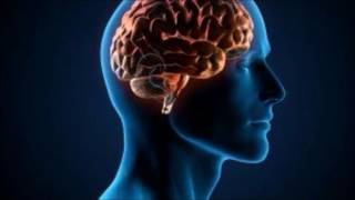 الاعجاز العلمي في العقل البشري