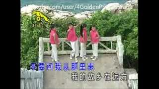 getlinkyoutube.com-四千金 ~  橄欖樹