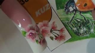 getlinkyoutube.com-цветы