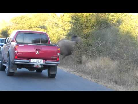 This is South Africa!!! Kruger Park