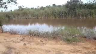 getlinkyoutube.com-Pescaria numa lagoa especial
