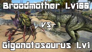 getlinkyoutube.com-ARK: Survival Evolved - Broodmother Lyrix Lvl100 vs Giganotosaurus Lvl1 - Dino Battle