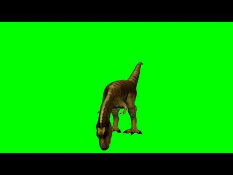 T-Rex Dinosaurs eat 3D Animation -  green screen effects