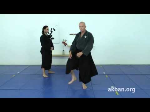 Yoku sokugyaku geri, side push kick, basic   Ninjutsu technique for Akban wiki