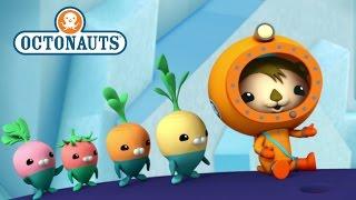 getlinkyoutube.com-Octonauts: Ocean Teamwork!