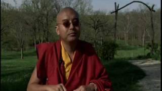 getlinkyoutube.com-Yongey Mingyur Rinpoche on Western Culture