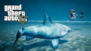 getlinkyoutube.com-GTA 5 PS4 - Jogando como Arraia e Tubarão (Play as a Ray & Shark - GTA 5 Peyote plant locations)