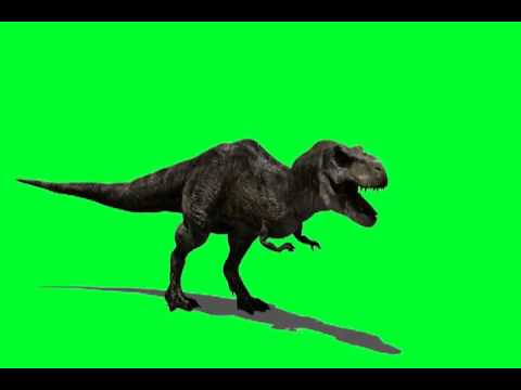 HD 720p 3D Green Screen T Rex -_fP1beoPLdE