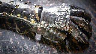 getlinkyoutube.com-Steel Gauntlet shell