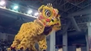 getlinkyoutube.com-2007 Segamat Lion Dance Performance 大马昔加末武术协会醒狮团