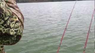 getlinkyoutube.com-pescuit pe chilia...captura 16.5 kg  crap
