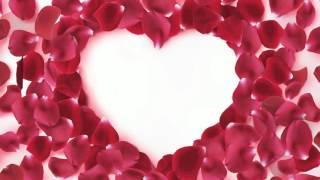 getlinkyoutube.com-Футаж HD День Святого Валентина Сердца  скачать бесплатно