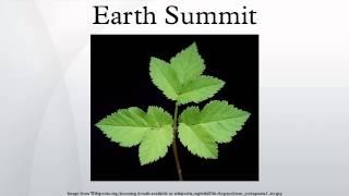 Earth Summit width=