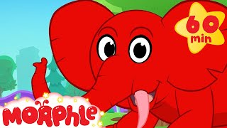 Morphle's Elephant Adventures! (+1 hour funny Morphle kids animal videos compilation)