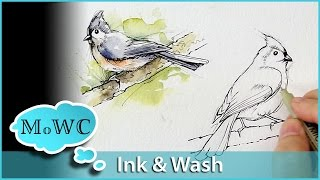 getlinkyoutube.com-Painting Birds With Line and Wash Watercolor Technique