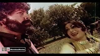WARI LA LE THALAY - NOOR JEHAN - PAKISTANI FILM CHAN HEERA