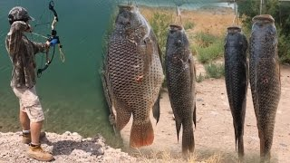 getlinkyoutube.com-Bowfishing Tilapia And Carp In Clear Water Using A Infinite Edge Bow And AMS Kit