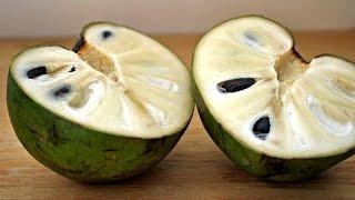 getlinkyoutube.com-فاكهة الشيريمويا تقتل السرطان وتذيبه (باذن الله)انشر لعل الله يشفي بها مريض سرطان