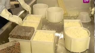 getlinkyoutube.com-ربى مشربش تزور معمل صناعة الجبنة الصفراء وتطلع على طريقة اعدادها   Roya