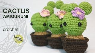 Download video: DIY Amigurumi Crochet Kawaii Cactus