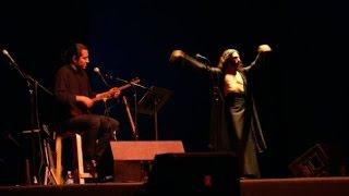 فستیوال هنر- حامد نیک پی، شاهرخ مشکین قلم/Nikpay & Moshkin Ghalam - Festival Honar