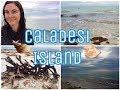 Caladesi Island State Park 🐚🌊
