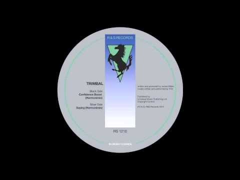 Trimbal - Saying (Harmonimix)