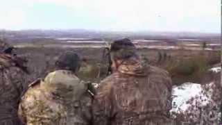 getlinkyoutube.com-Late Season Moose Hunting at Red Indian Lake Outfitters - Woods N Water TV