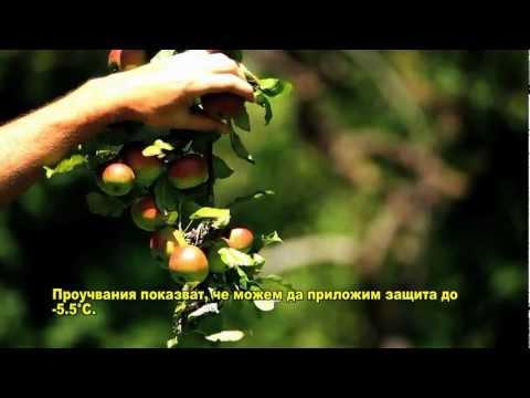 Agrofrost_short_bulgarian.avi