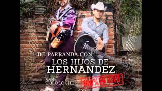 getlinkyoutube.com-Los Hijos De Hernandez - En Vivo Con Tololoche (Disco Completo/Full Album) [2014][Descarga]