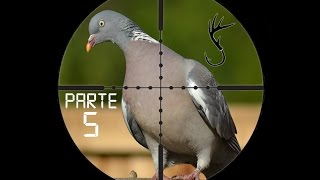getlinkyoutube.com-Caza De Palomas Y Perdices Con Rifle De Aire Parte 5